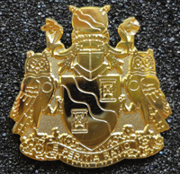 Gold volunteer pin given to Council members